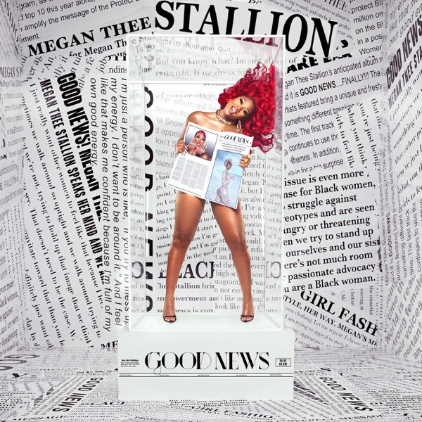 DOWNLOAD Download Megan Thee Stallion – Don't Stop feat. Young Thug